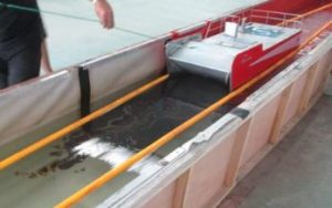 Seafoil_SGS Testing